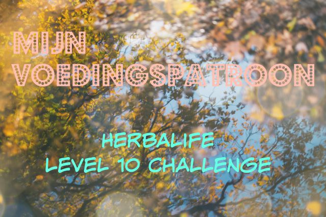 Herbalife Level 10 Challenge | Mijn voedingspatroon